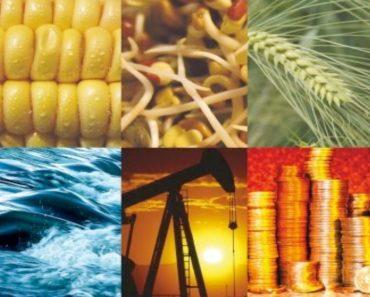commodities buy