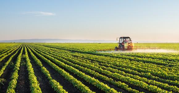 agricultural stocks forecast